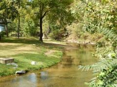 Hawksbill-Creek.jpg